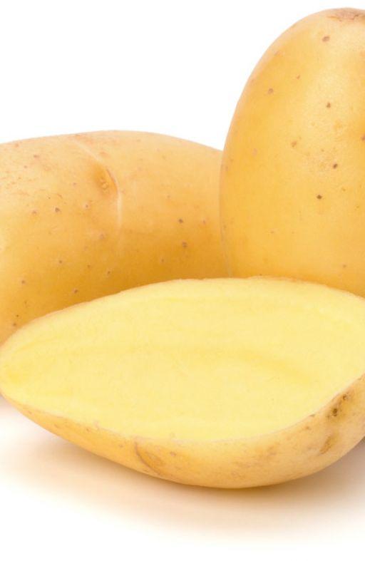 Krumpir bijeli MELODY Cijena