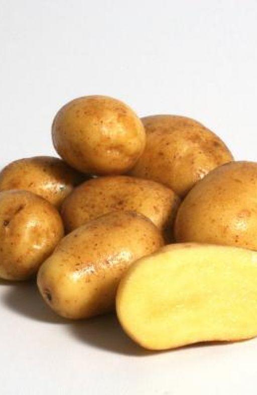 Krumpir bijeli DITTA Cijena