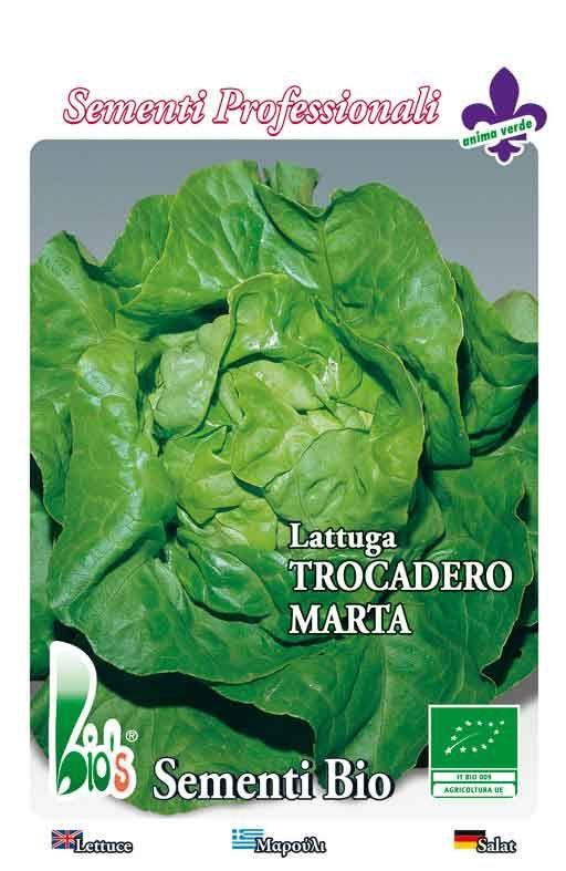 PUTERICA TROCADEROMARTA - salata Cijena