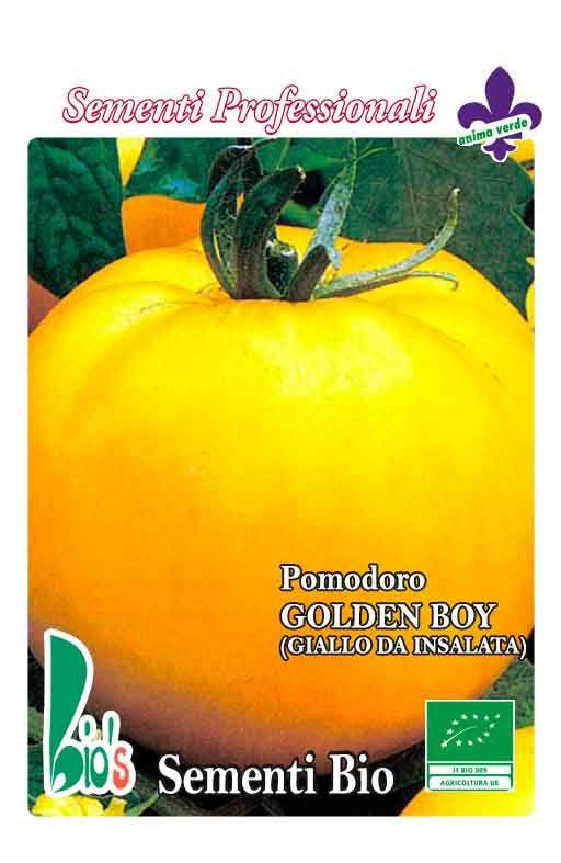 Rajčica GOLDEN BOY - za salatu Cijena