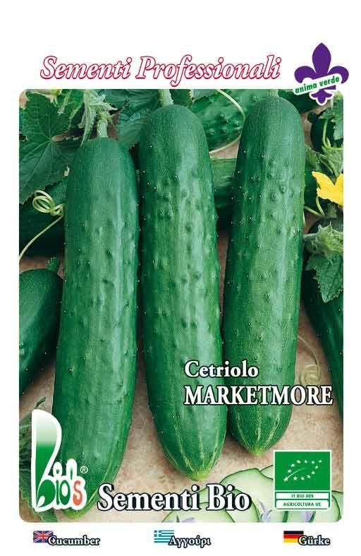 Krastavac MARKETMORE - salatni Cijena