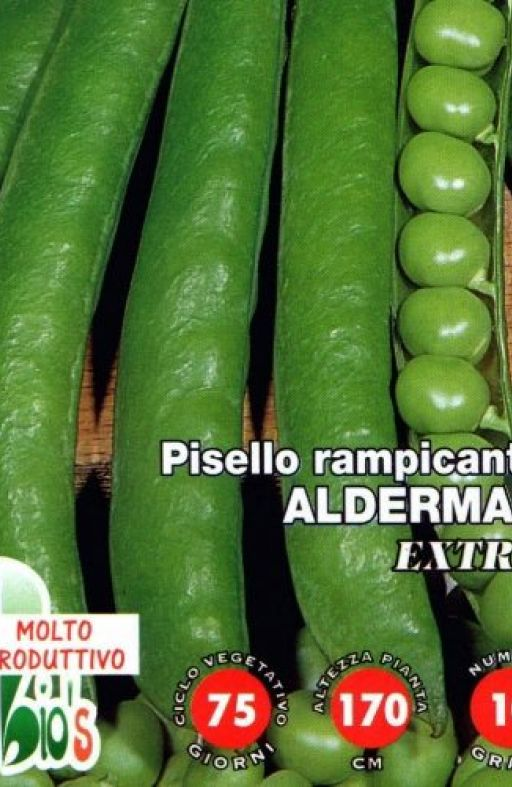 Grašak ALDERMAN - visoki Cijena