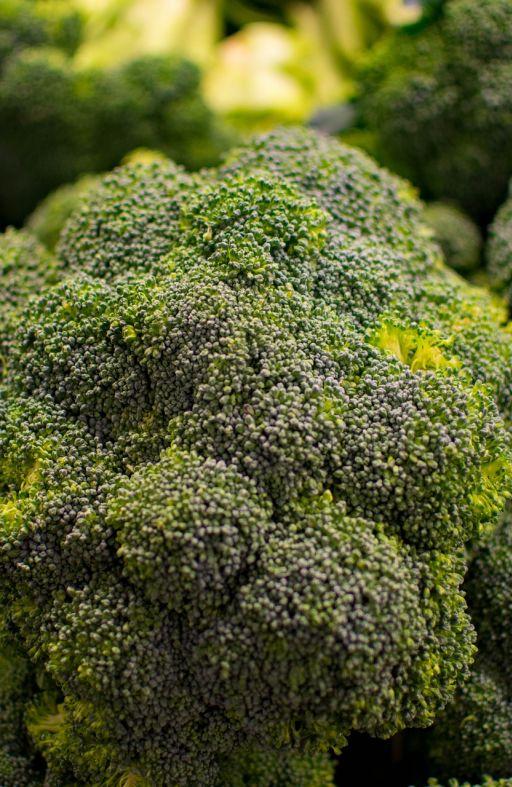 Brokula RAMOSO CALABRESE - kasna Cijena