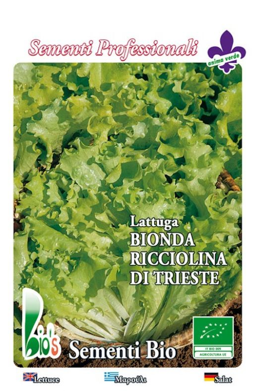 Salata TRIESTINA - za rezanje, kovrčava Cijena