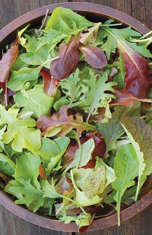 Salata MISTICANZA - mješavina Cijena