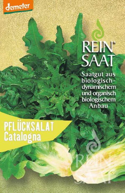 Salata CATALOGNA Cijena