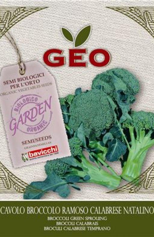 Brokula CALABRESE Cijena